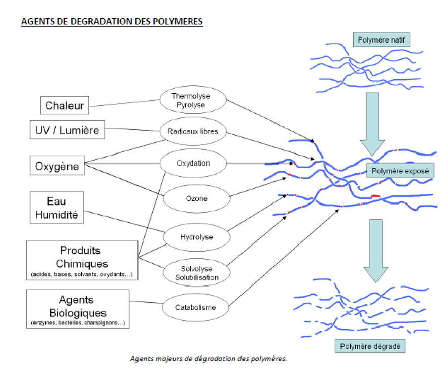 degradation-polymeres-conservation-filaments